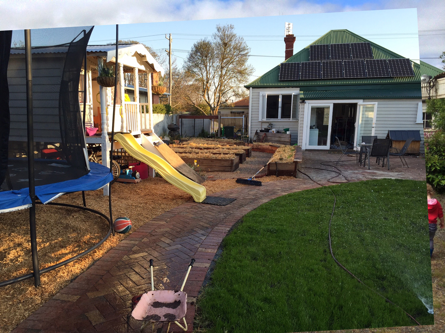 adventures in backyard landscaping paul tagell